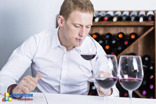 Curso de Cata de vinos - Maridaje - Sumiller