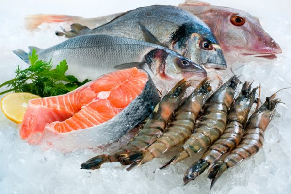 appcc-pesquero
